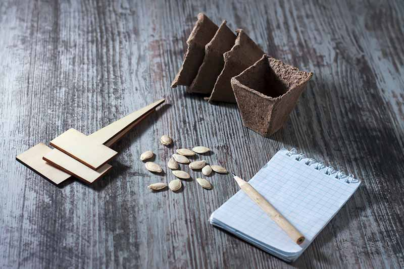 A close up of a small notepad and pencil set on a rustic wooden surface with some seeds and planting pots to the left and top of the frame.