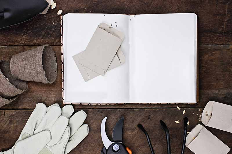 A top down picture of an open book with blank pages, and seed packets on top of it, to the left are some small planing pots, and to the bottom of the frame are gardening gloves, pruning shears, and a hand cultivator, set on a rustic wooden surface.