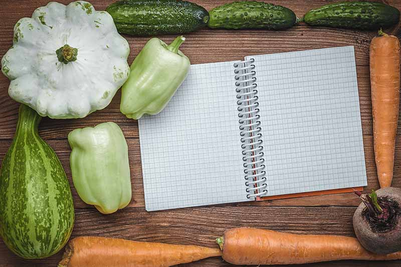 A close up top down picture of a notebook opened up with various vegetables surrounding it set on a wooden surface.