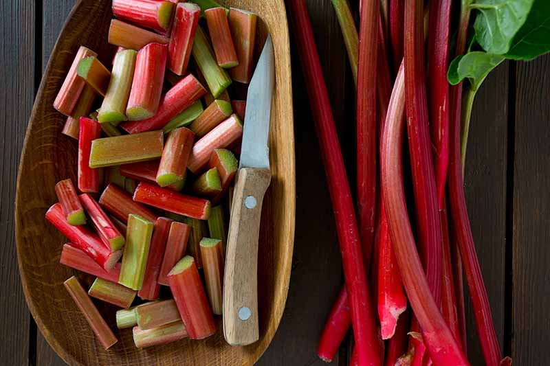 A close up of freshly harvested rhubarb stalks set on a wooden surface, next to a wooden bowl containing a knife and some of the stalks chopped into pieces.