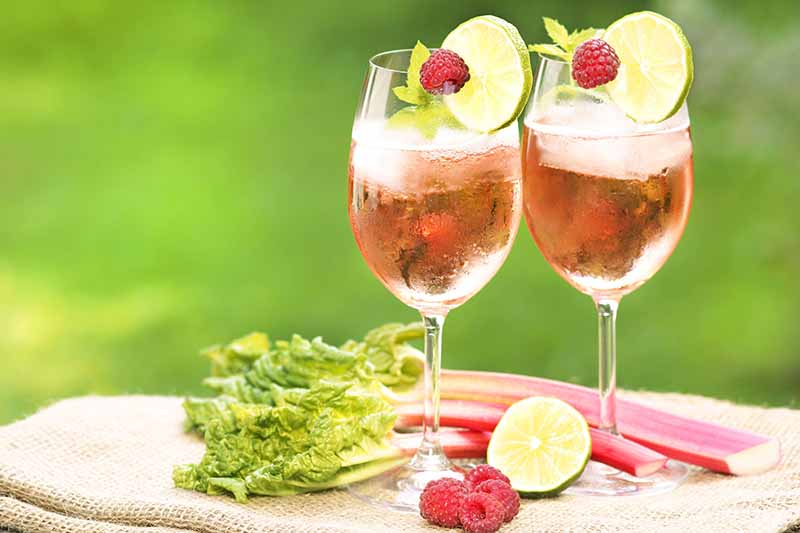 A close up of two wine glasses containing a pink drink with a raspberry and a slice of lime on the edge of the glasses. Set on a rustic fabric, there are rhubarb stalks and a half lime. The background is green in soft focus.