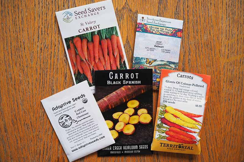 A close up of various seed packets of heirloom and open-pollinated carrot varieties set on a light colored wooden surface.