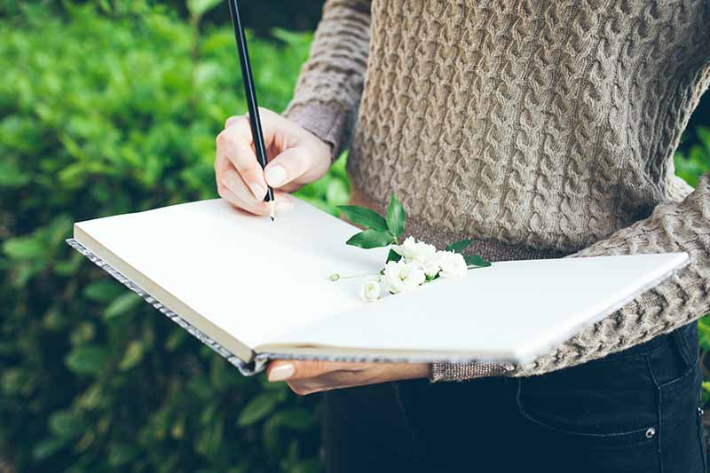 A close up of a woman holding an open gardening journal, holding a pencil making a sketch of her garden, on a green background in soft focus.