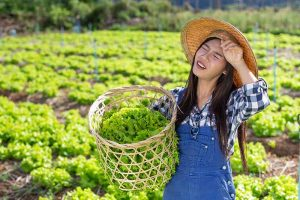 The Best Sun-Protective Gear for Gardeners