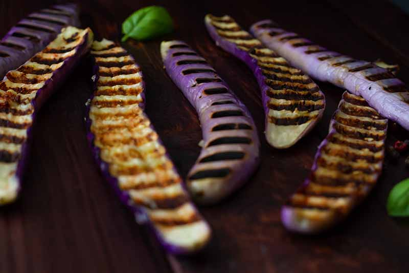 A close up of thin purple Japanese eggplants, cut in half and being seared on a grill, fading to soft focus in the background.