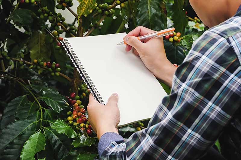 A close up of a hand from the right of the frame holding a pen, writing on a blank page of a notebook, with a garden scene in soft focus in the background.