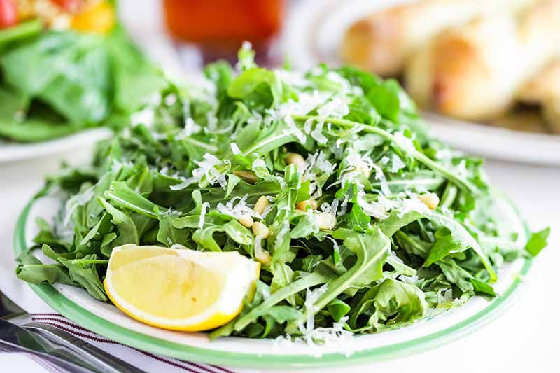 A close up of a plate of arugula salad topped with pine nuts and parmesan with a slice of lemon at the side.