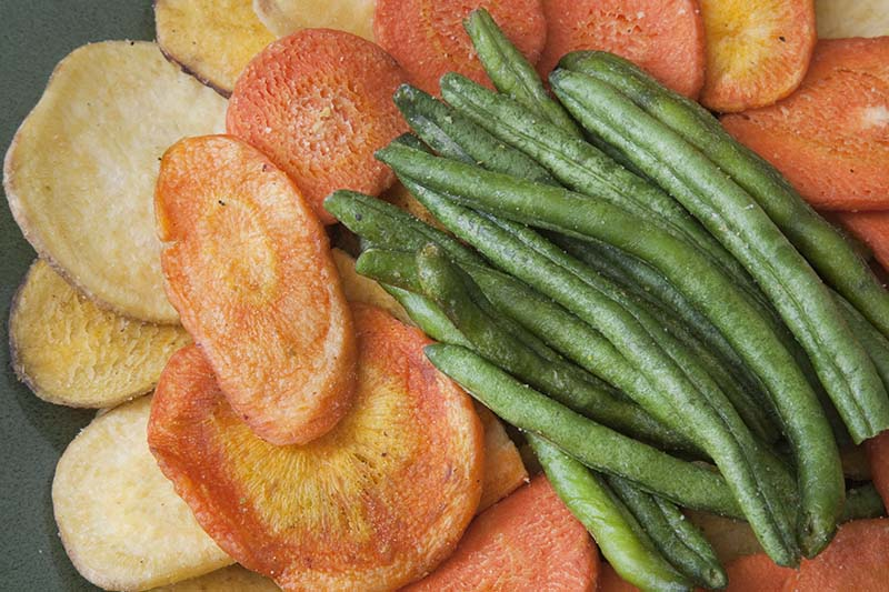 A close up top down picture of various vegetables prepared in a dehydrator for long term storage.