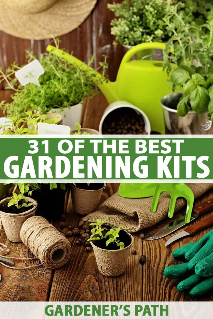 A vertical picture of a selection of indoor gardening tools and supplies set on a wooden surface. To the center and bottom of the frame is green and white text.