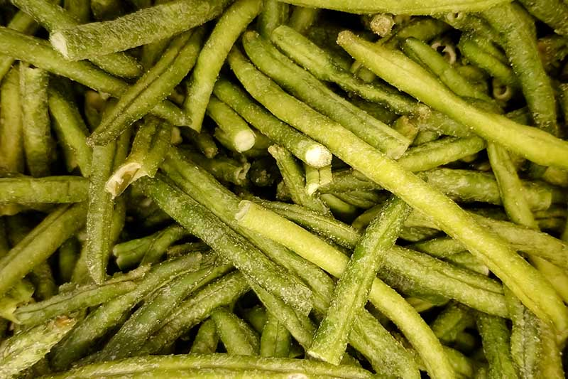 A close up of bush beans some of which are cut up and others are whole.