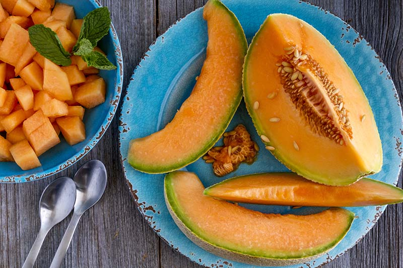 A close up top down picture of a ripe cantaloupe melon prepared in two different ways: cut into slices and set on a blue plate, and to the left it is cubed, and set in a blue bowl with a sprig of mint to garnish.