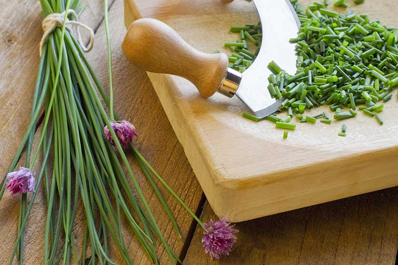 A close up picture of a bunch of chives on a chopping board.