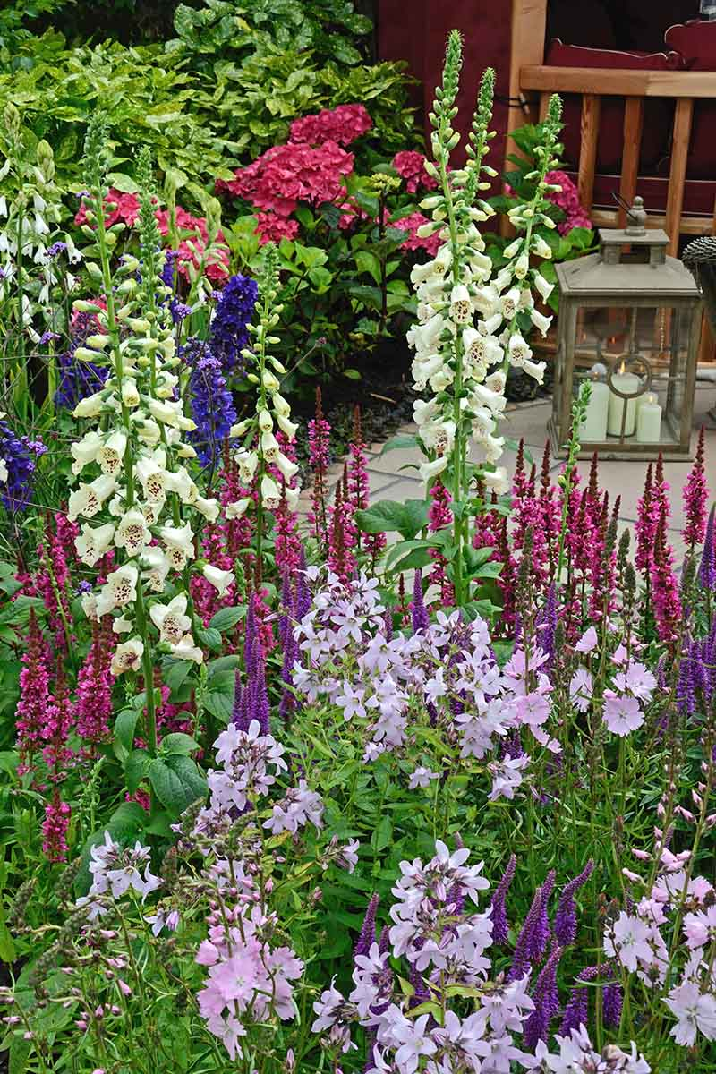 A vertical picture of a cottage style flower garden with colorful native species to attract pollinators.