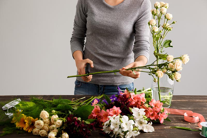 A close up of a woman dressed in a gray sweater using pruning shears to cut the bottom of the stems off from freshly cut flowers to place in a glass vase.