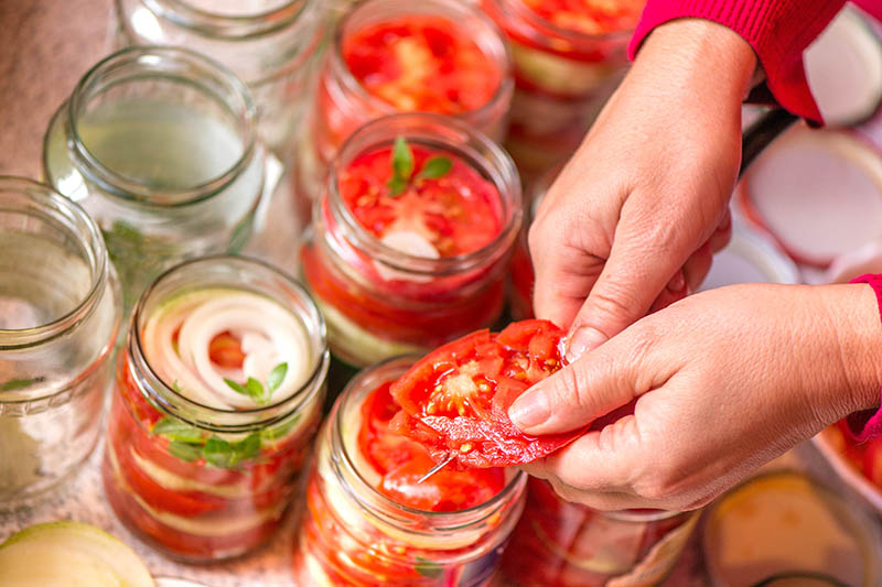A close up of hands from the right of the frame chopping up tomatoes and placing them in jars for pickling. In the background are glass jars, some full and others empty, in soft focus.