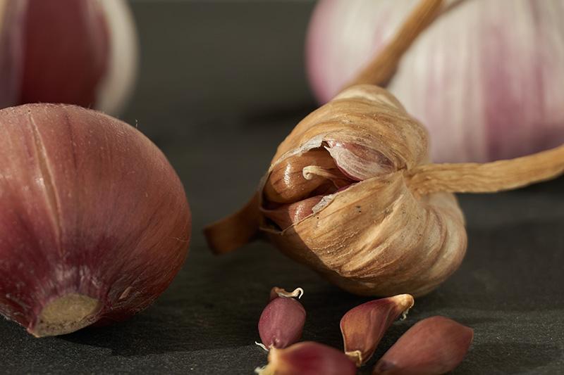 A close up of the dried bulbils of Allium sativum, on a soft focus background.