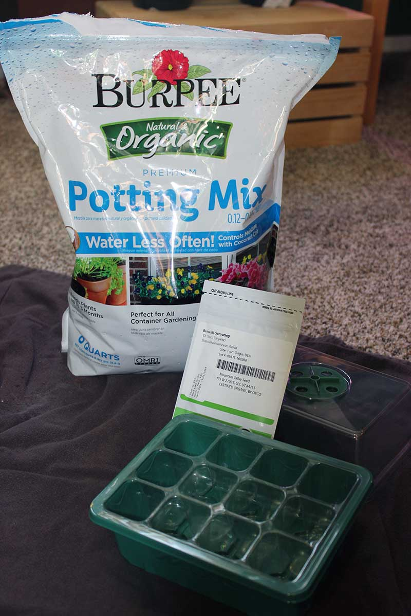 A close up vertical picture of a seedling tray with a bag of organic potting mix in the background.