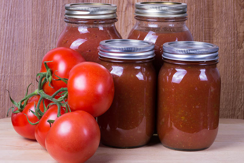 A close up of a set of glass jars with metal tops containing red sauce set on a wooden surface with a wooden background. To the left of the frame are five bright red tomatoes still attached to the vine.