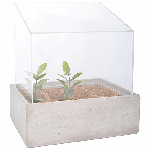 A close up of a mini terrarium with biodegradable pots containing small plants inside on a white background.