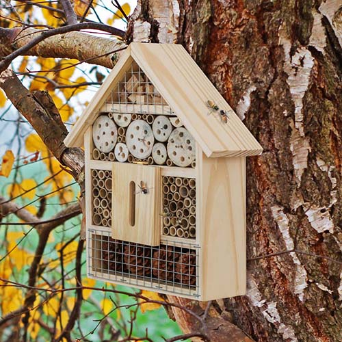 A close up of a wooden insect hotel mounted on a large tree on a soft focus background.