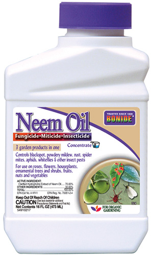 A close up of the packaging of a bottle of neem oil for controlling pests in the garden.