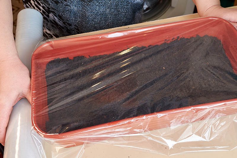 A close up of a hand placing plastic cling wrap over a red tray containing soil.