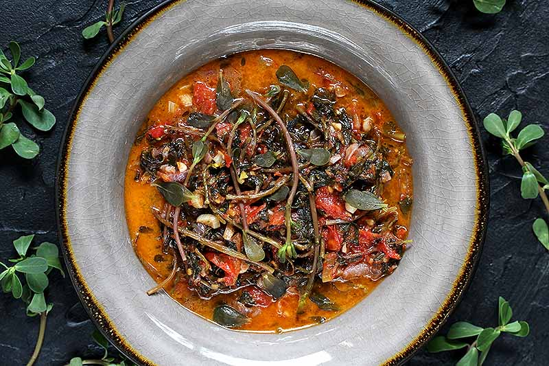 A close up top down picture of a gray ceramic bowl with a tomato soup and purslane herbs, set on a dark gray surface with leaves scattered around.