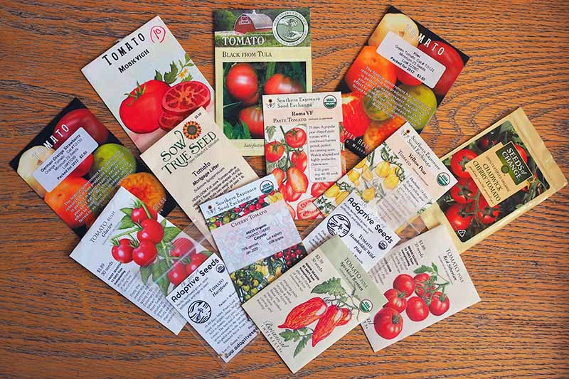 A top down close up picture of a variety of seed packets set on a wooden surface.