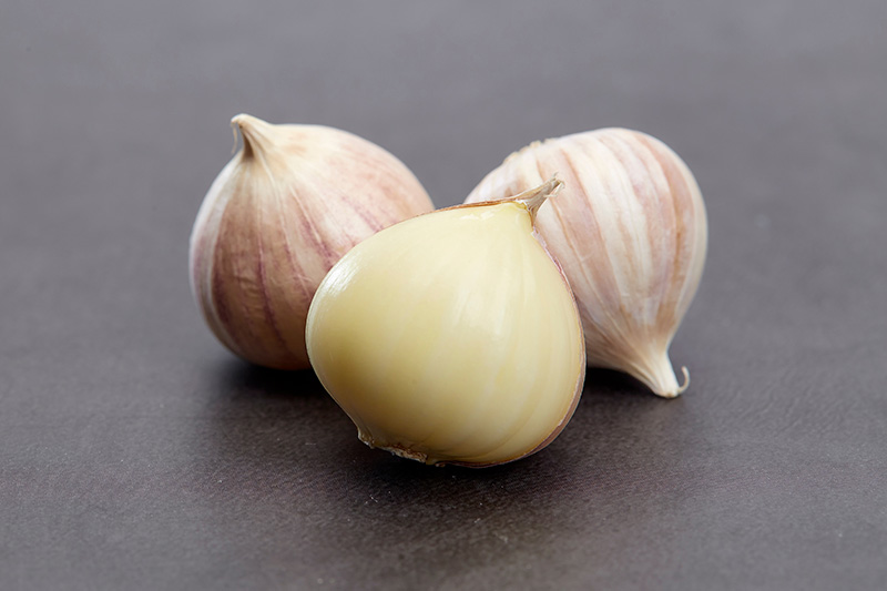 A close up of three small Allium sativum bulbils with the paper skin still attached to two of them, and partially peeled from the third, set on a gray surface.