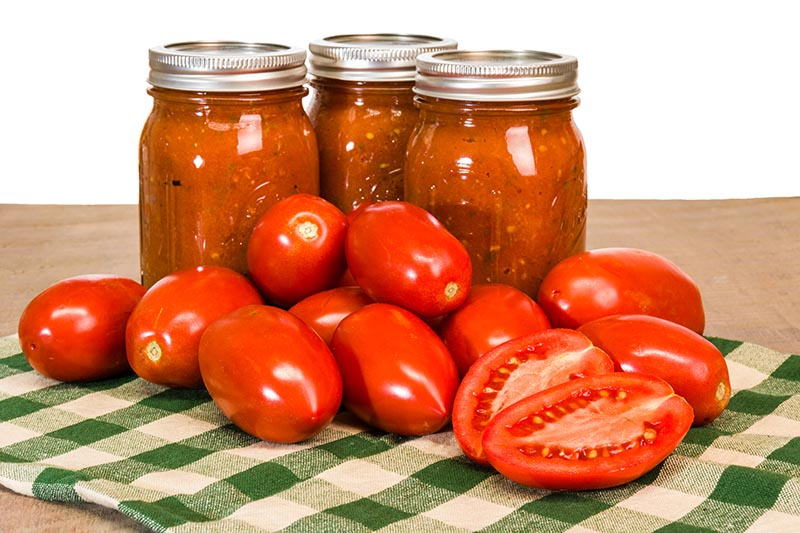 A close up of three glass jars with metal tops, containing red sauce, set on a green checked fabric. In the foreground are freshly harvested bright red tomatoes.