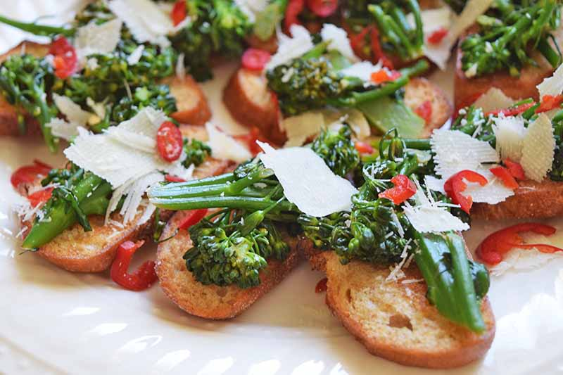 A close up of small pieces of crusty French bread topped with broccoli rabe, red chili slices, and shavings of parmesan cheese, set on a white ceramic plate.