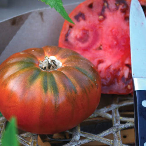 A close up of a 'Cosmonaut Volkov' variety of tomato, freshly harvested and sliced in half. To the right of the frame is a knife.