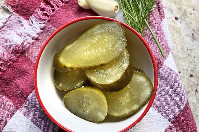 A close up top down picture of a small white and red bowl containing pickled cucumbers, set on a red and white fabric on a white surface, with garlic and dill in the background.