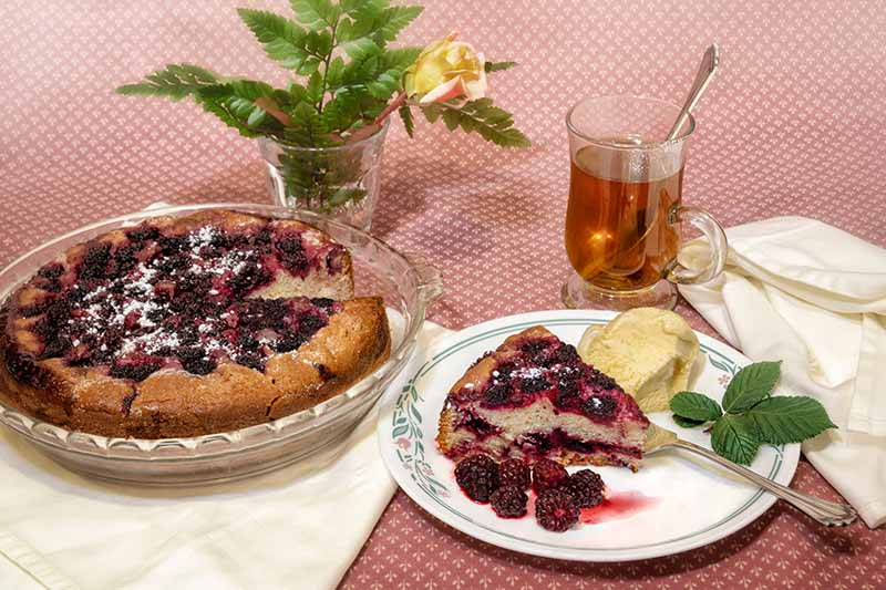 A close up of a freshly baked fruit pie in a glass dish, with a white ceramic plate to the right with a large slice and fresh berries to the side. On the right of the frame is a glass cup with tea and a spoon, all set on a red tablecloth.
