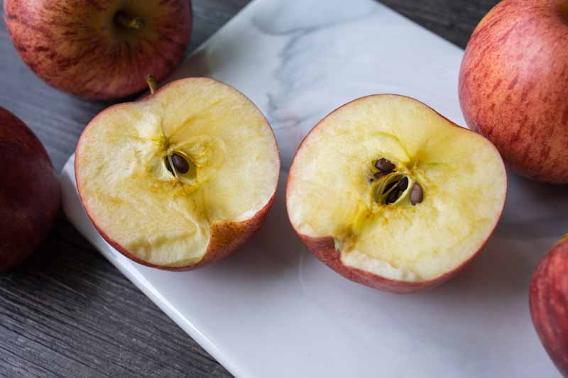 Oblique view of Honeycrisp apples that have been sliced open to show soggy breakdown disorder.