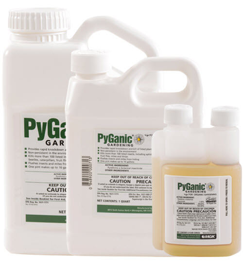 PyGanic Gardening Pyrethrin Liquid Spray on white isolated background