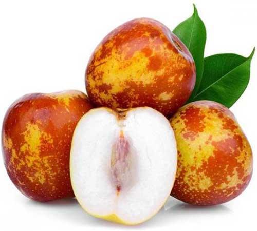 A close up of the fruit of the 'Shanxi Li' jujube plant on a white background.