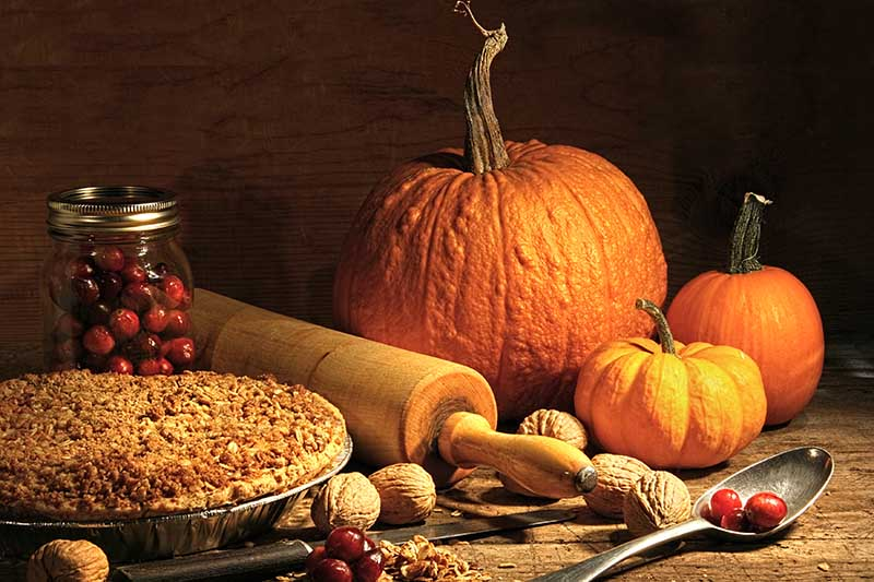 A close up of an autumnal kitchen scene, with a pie, a rolling pin, unshelled walnuts, and three pumpkins on a rustic wooden surface on a dark background.