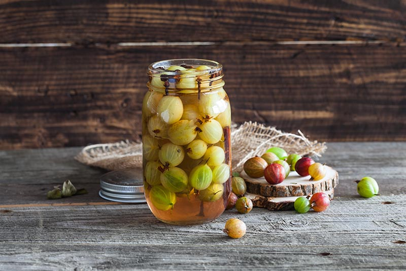 A close up of a glass jar containing pickled gooseberries, set on a wooden surface with fruits scattered either side, with a wooden wall in the background.