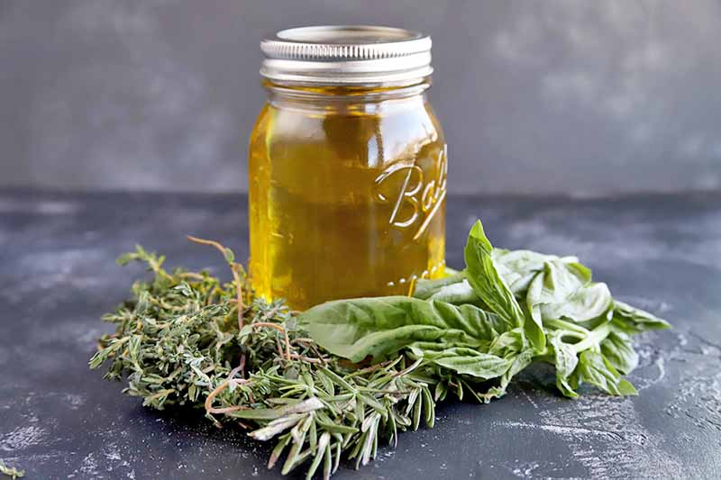 A close up of a small jar filled with herb infused oil, with various fresh herbs on the gray surface, pictured on a gray soft focus background.