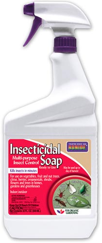 A close up of the packaging of a spray bottle of insecticidal soap on a white background.