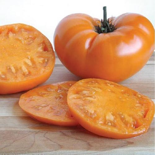 A close up of a bright orange 'Kellogg's Breakfast' tomato, a whole fruit pictured next to one that has been sliced, set on a wooden surface with a white background.