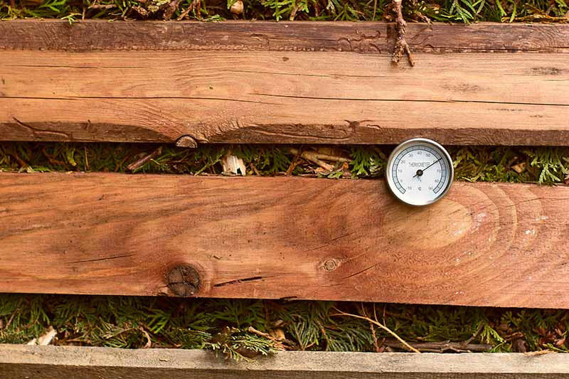 A close up of a small thermometer measuring the temperature inside a backyard compost pile built out of wooden slats.