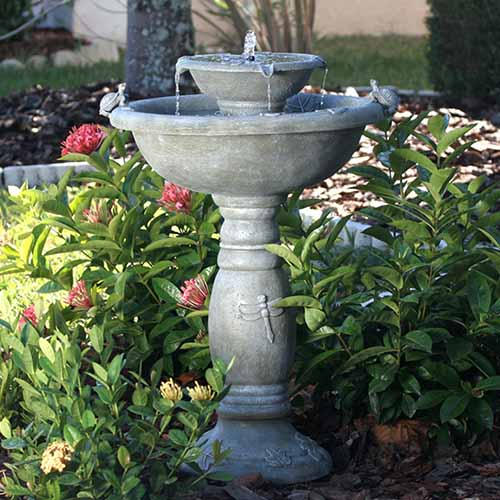 A close up of a concrete outdoor fountain with two tiers, set in among shrubs in the garden.