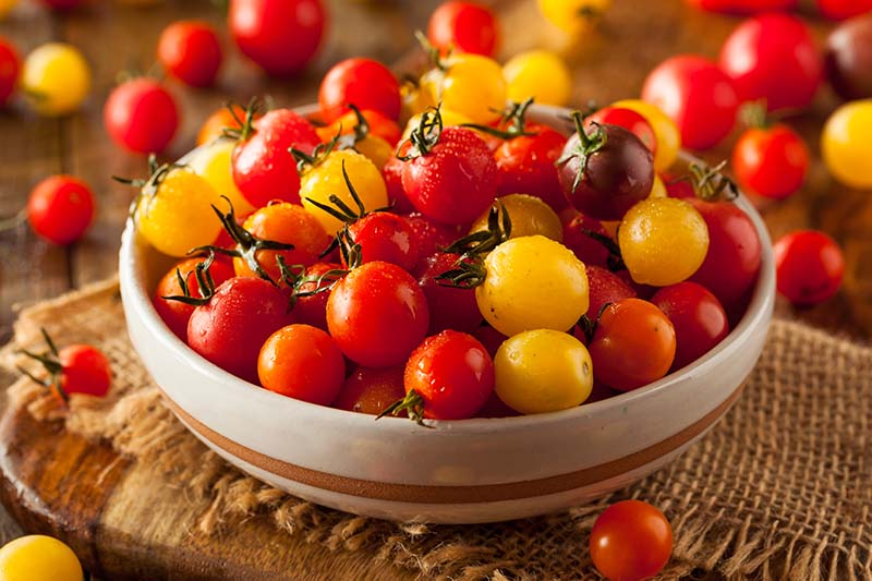 A close up of a bowl full of heirloom hybrid cherry tomatoes, set on a rustic fabric on a wooden surface, pictured on a soft focus background.