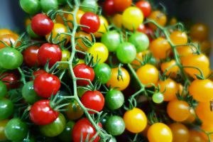 17 of the Best Cherry Tomatoes to Plant in Your Garden