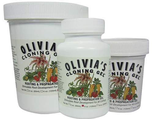 A close up of three bottles of Olivia's Cloning Gel for rooting stem cuttings, on a white background.