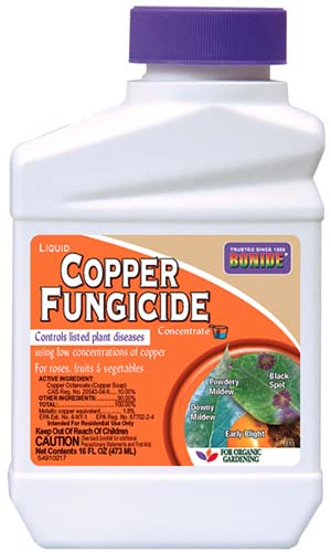 A close up of the packaging of a plastic bottle of Bonide Copper Fungicide for treating plant diseases.