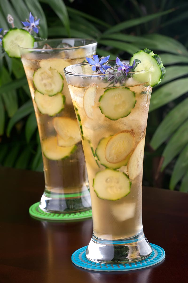 A close up vertical picture of two glasses with cucumber and borage flowers as a garnish.