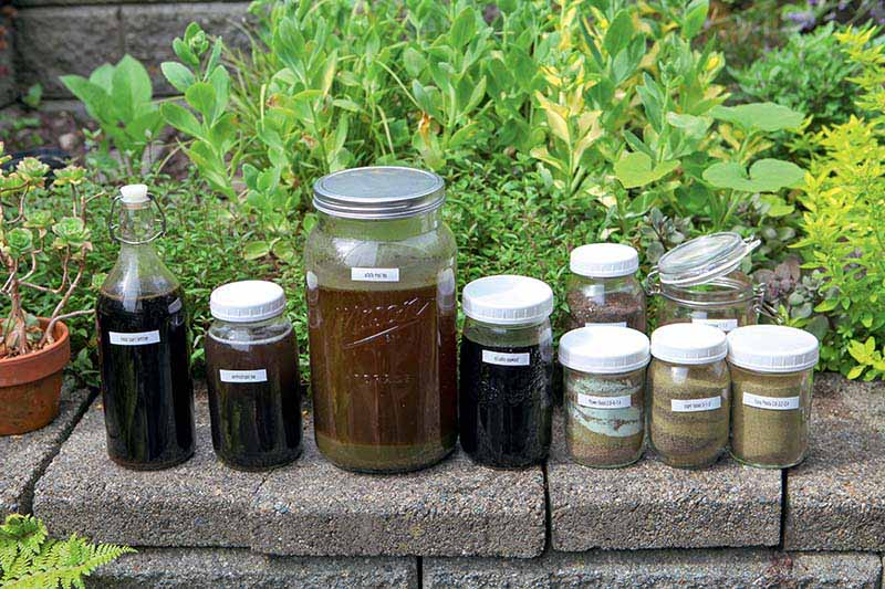 A variety of glass and plastic jars containing liquid and powders set on a low stone wall with shrubs in the background.